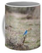 B10 Coffee Mug
