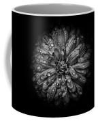 Backyard Flowers In Black And White 44 Coffee Mug by Brian Carson