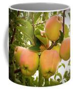 Backyard Garden Series - Apples In Apple Tree Coffee Mug