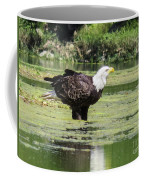 Bald Eagle's Look Coffee Mug