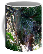 Bald-faced Hornets Nest Coffee Mug by Rockin Docks