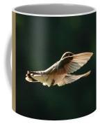 Bashful Hummingbird Coffee Mug