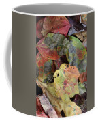 Beauti Fall Coffee Mug
