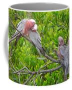 Beautiful Galah Birds With Babies. Wilsons Promontory National Park, Australia Coffee Mug