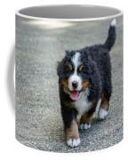 Bernese Mountain Dog Puppy 2 Coffee Mug
