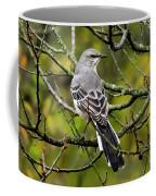 Mockingbird In Tree Coffee Mug