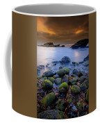 Bird Rock Lajolla II Coffee Mug
