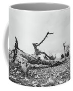 Black And White Picture Of  Large Dry Tree Trunk On The Ground Coffee Mug by PorqueNo Studios