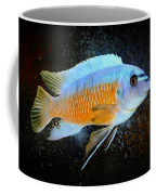 Blue Mbuna Cichlid Coffee Mug