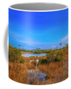Blue Sky And Marsh Coffee Mug by Tom Claud