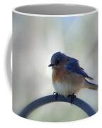 Bluebird Fluff Coffee Mug