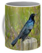 Boat Tailed Grackle Coffee Mug