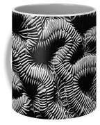 Brain Coral In Macro Bw Coffee Mug