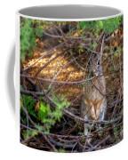 Briar Brunch H1934 Coffee Mug by Mark Myhaver