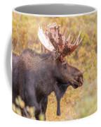 Bull Moose In Fall Colors Coffee Mug