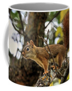 Bushy Tailed  Coffee Mug