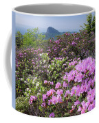 Catawba Rhododendron Table Rock  Coffee Mug