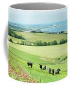 cattle in field and east coast Berwickshire Coffee Mug