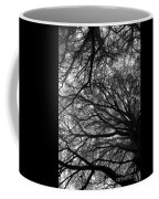 Cedars In The Mist Coffee Mug