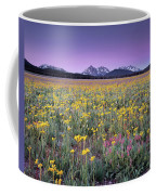 Central Idaho Color Coffee Mug