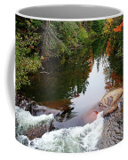 Chikanishing River In Autumn Coffee Mug