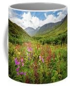 Chugach Midsummer Coffee Mug by Tim Newton