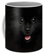 Close-up Portrait Of Happy Pomeranian Spitz Dog Coffee Mug by Sergey Taran