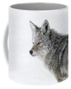 Close Up Coffee Mug by Ronnie and Frances Howard