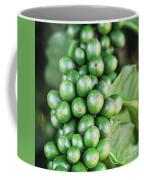 Coffee Berries Coffee Mug