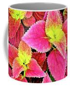 Coleus Colorfulius Coffee Mug
