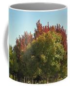 Colors Of The Neighborhood 25 Coffee Mug