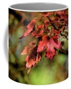 Colours Turning Coffee Mug