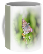 Common Checkered Skipper Butterfly  Coffee Mug