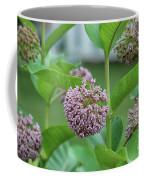 Common Milkweed Coffee Mug