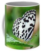 Common Pierrot Butterfly Coffee Mug