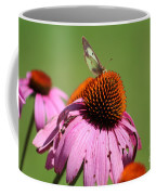 Cone Flower Butterfly At Rest Coffee Mug