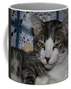 Content Cat Coffee Mug