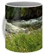 Cool Clear Water Coffee Mug