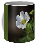 Cosmos In The Cottage Garden Coffee Mug