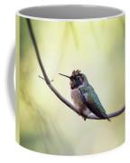 Costa's Humminbird On A Branch  Coffee Mug