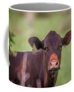 Curious Cow #636 Coffee Mug by Tom Claud