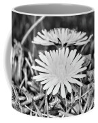 Dandelion Up Close And Personal Black And White Coffee Mug