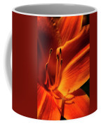 Day Lily Delight Coffee Mug