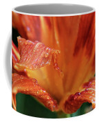 Daylily Dewdrops Coffee Mug