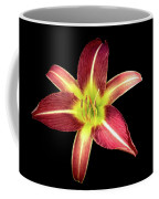 Daylily On Black Coffee Mug by Alison Frank