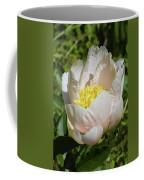 Delicate Pastel Peach Cupped Peony Blossom Coffee Mug