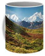 Denali Autumn Coffee Mug by Tim Newton