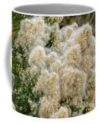 Desert Broom H1835 Coffee Mug by Mark Myhaver