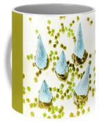 Desserted Coffee Mug