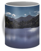 Discovery Lake Beauty Coffee Mug by Alison Frank